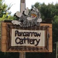 Pencarrow Cattery