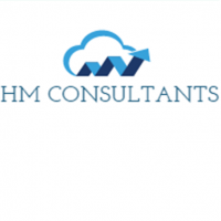 HM Consultants Limited