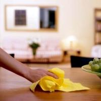 PA Domestic Cleaning Services Ltd