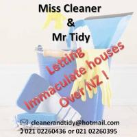 Miss Cleaner & Mr Tidy