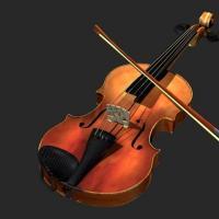 Frog Management Group Beginners Violin Lessons