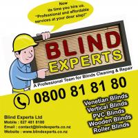 Blind Experts