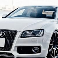 Elite Car Polishing