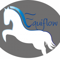 Equiflow - Equine Body Work