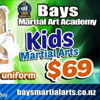 Bays Martial Art Academy