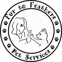 Fur to Feathers Pet Services