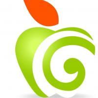 Fruitful Bookkeeping Ltd