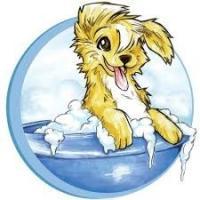 Doggie Day Spa & Resort