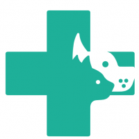 Veterinary Nurse Services