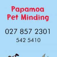 Papamoa Pet Minding