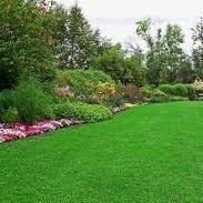 green finger lawn n land creations
