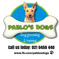 PABLO'S DOGS