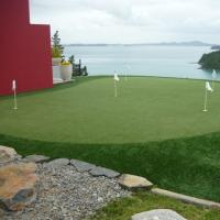 Tiger Turf Golf & Lawn