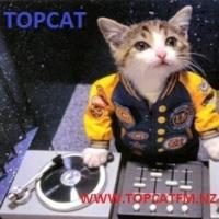 Topcat Fm
