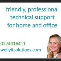 Wellington IT Solutions