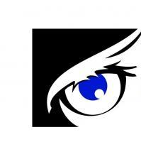 Wiseman Digital Surveillance Ltd
