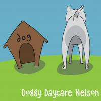 Doggy Daycare Nelson Ltd