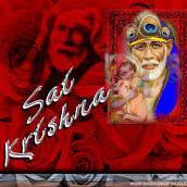 Sai Krishna Foods Ltd