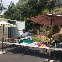 Hawkes Bay Fruit and Veg