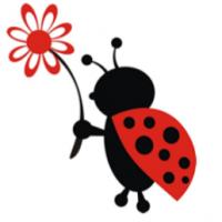 Miss Clutter Bug