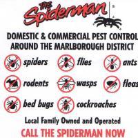The Spiderman Marlborough