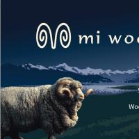 Mi Woollies Limited
