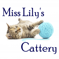 Miss Lily's Cattery Ltd.