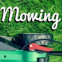 Michelle's Mowing