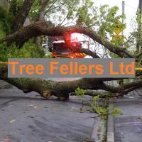 Tree Fellers NZ Ltd