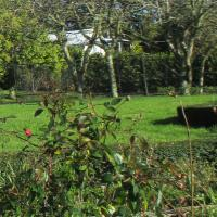 Lawn Mowing and Edging for locals
