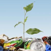 Smart Environmental Ltd
