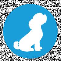 White Dog Digital Marketing