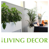 Living Decor Hire Plants