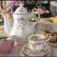 High Tea Hire - Havelock North