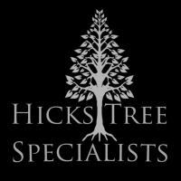 Hicks Tree Specialists