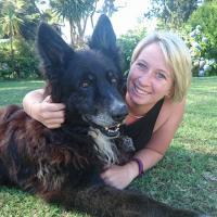 Pawfect Ltd - Dog walking, Cat feeding, Pet Care
