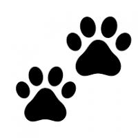 Happy Pawss Pet