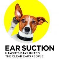 Ear Suction Hawkes Bay