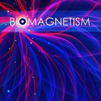 Biomagnetism New Zealand