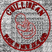 Chillibean NZ