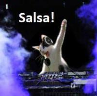 SalsaCrewNZ