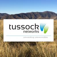 Tussock Networks