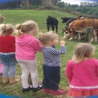 Country Footsteps Christian Preschool