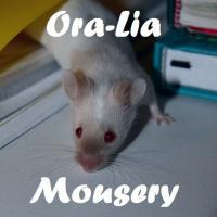 Ora-Lia Mousery