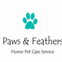 Paws and Feathers - Home Pet Care Service