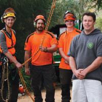 Tree Magic Arborists Limited