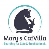Mary's CatVilla