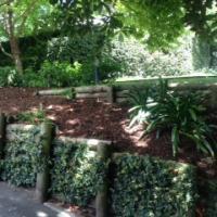 Auckland Garden Mulch & Firewood