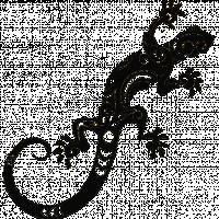 Warm Reptile Designs - Digital Agency