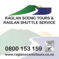 Raglan Scenic Tours & Raglan Shuttle Services